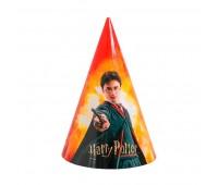 Колпачки Гарри Поттер (6 шт.)