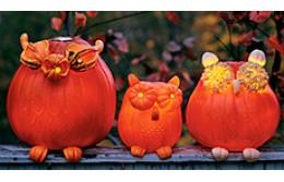 Шаблоны для вырезания тыквы на Хэллоуин